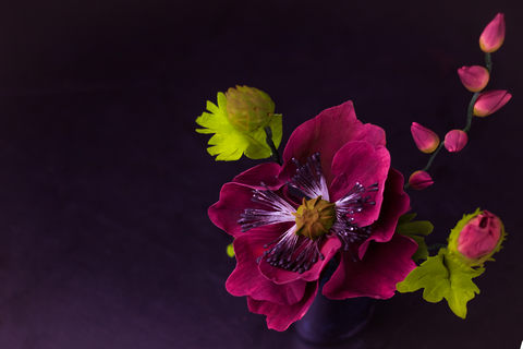 лепка сахарных цветов